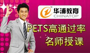 华浦教育pets培训